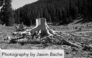photography-jason-bache1